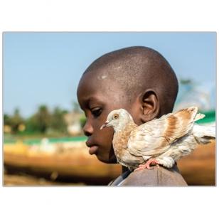 16. Viltis. Fritaunas, Siera Leonė